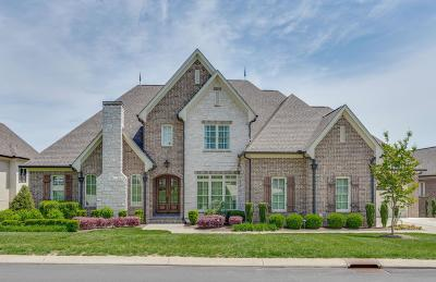Williamson County Single Family Home For Sale: 2172 Hartland Rd