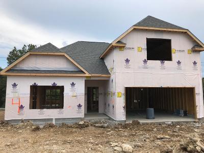 Smyrna Single Family Home For Sale: 5725 Hidden Creek