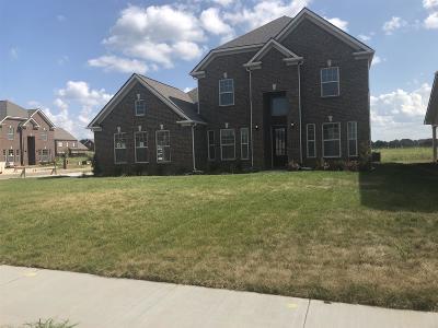 Murfreesboro Single Family Home For Sale: 938 Covenant Blvd Lot 173a