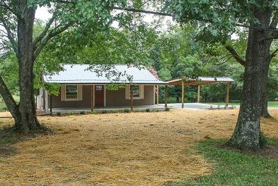 Spring Hill Single Family Home For Sale: 1819 Lasea Rd