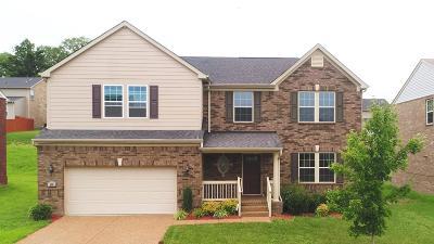 Mount Juliet Single Family Home For Sale: 296 Cobblestone Lndg