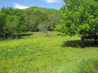 Farm For Sale: 375 Trace Creek Rd