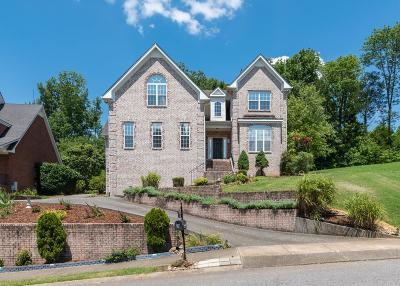 Hendersonville Single Family Home For Sale: 134 Ridgeview Trce