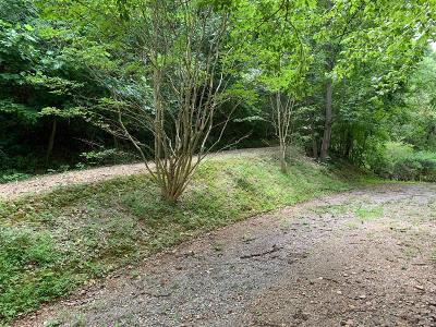 Williamson County Residential Lots & Land For Sale: 3901 Sycamore