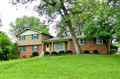Hendersonville Single Family Home Active Under Contract: 115 Moyna Dr