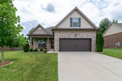 Gallatin Single Family Home For Sale: 589 Smoky Mountains Dr