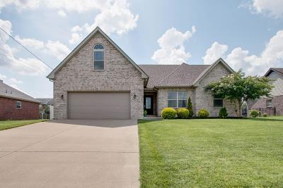 Smyrna Single Family Home For Sale: 213 Mill Creek Ct