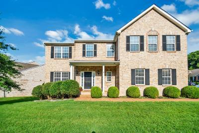 Hendersonville Single Family Home For Sale: 118 Judson Dr