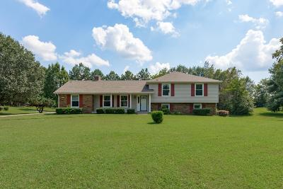 Clarksville Single Family Home For Sale: 3276 Trough Springs Rd