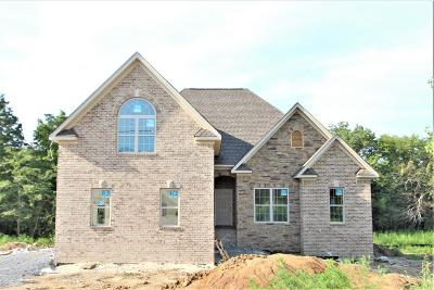 Mount Juliet Single Family Home For Sale: 83 Ridgewater Way #83