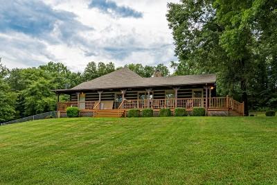 Pulaski Single Family Home For Sale: 1650 Amos Hamlett Rd