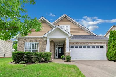 Mount Juliet Single Family Home For Sale: 919 Legacy Park Rd
