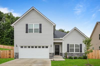 Hermitage Single Family Home For Sale: 1104 Lady Nashville Dr