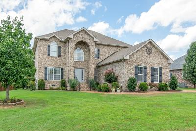 Mount Juliet Single Family Home For Sale: 119 Seven Springs Dr