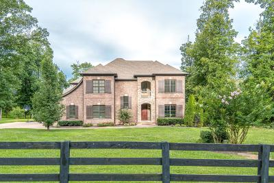 Williamson County Single Family Home For Sale: 3120 Chase Point Dr