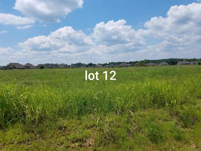 Residential Lots & Land For Sale: 1026 Rhonda Dr