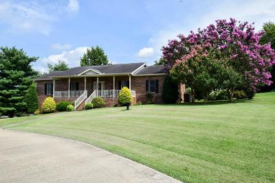 Hendersonville Single Family Home For Sale: 2539 Long Hollow Pike