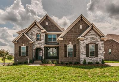Nolensville TN Single Family Home For Sale: $595,000