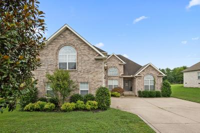 Sumner County Single Family Home For Sale: 765 Starpoint Drive