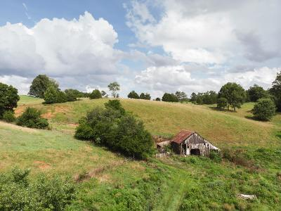 Pulaski Residential Lots & Land For Sale: 747 Pigeon Roost Rd