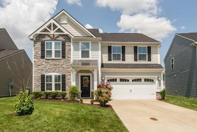 Murfreesboro Single Family Home For Sale: 2920 Shellsford Cir