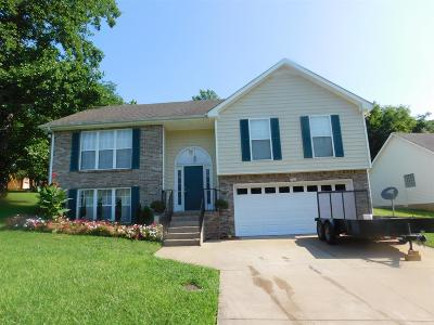 Clarksville Single Family Home For Sale: 527 Turner Reynolds Ct
