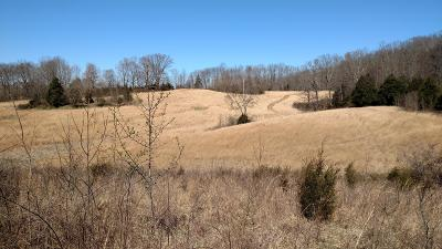 Sumner County Residential Lots & Land For Sale: 351 Calvert Ridge Rd