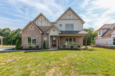 Rutherford County Single Family Home For Sale: 9907 Bluegill Ct.