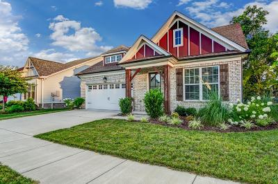 Sumner County Single Family Home For Sale: 85 Nokes Dr
