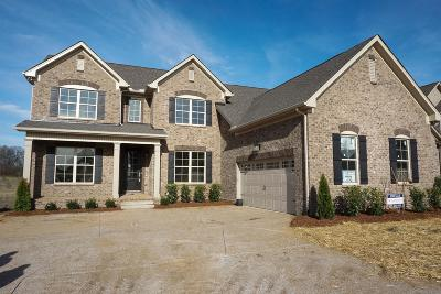 Sumner County Single Family Home For Sale: 1020 Appaloosa Way Lot 6