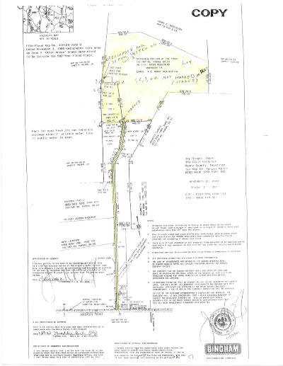 Spring Hill Residential Lots & Land For Sale: 4807 Winget Ln