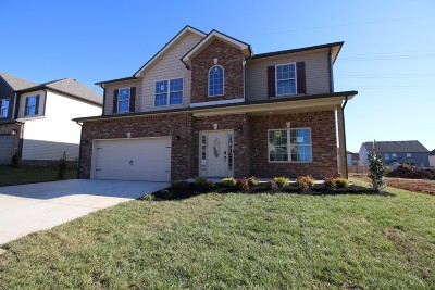 Clarksville Single Family Home For Sale: 447 Summerfield