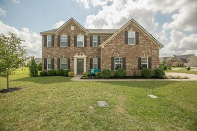 Murfreesboro Single Family Home For Sale: 1341 Amboress Ln