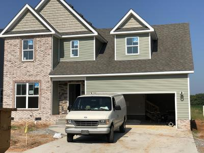 Clarksville Single Family Home For Sale: 324 Summerfield