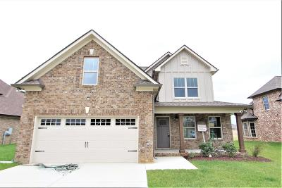 Smyrna Single Family Home For Sale: 140 Neecee Dr. #35