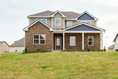 Smyrna Single Family Home For Sale: 5325 Abbottswood Dr