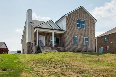 Smyrna Single Family Home For Sale: 5323 Abbottswood Dr