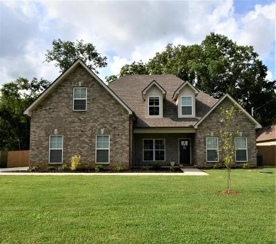 Christiana Single Family Home For Sale: 312 Winding Branch Ct