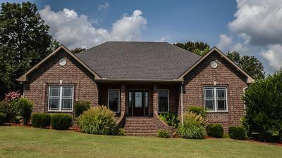 Robertson County Single Family Home For Sale: 6512 Buzzard Creek Rd