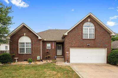 Hendersonville Single Family Home For Sale: 289 Iris Dr