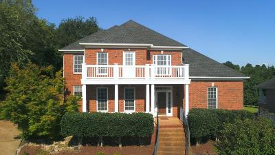 Goodlettsville Single Family Home For Sale: 1248 Twelve Stones Xing