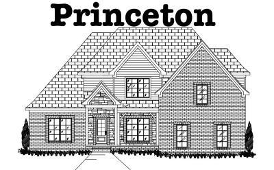 Single Family Home For Sale: 902 Paislee Raine Drive
