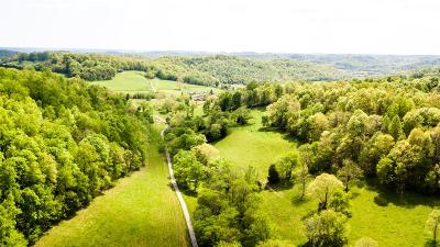 Pulaski Residential Lots & Land For Sale: Mitchell Rd