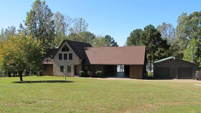 Houston County, Montgomery County, Stewart County Single Family Home For Sale: 195 Cedar Point Rd