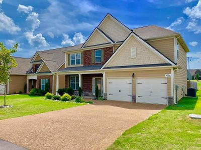Spring Hill  Single Family Home For Sale: 5004 Kendrick Dr