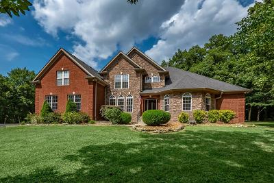 Spring Hill Single Family Home For Sale: 3629 Stonecreek Dr