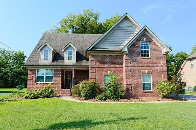 Smyrna Single Family Home For Sale: 619 Virginia Belle Dr