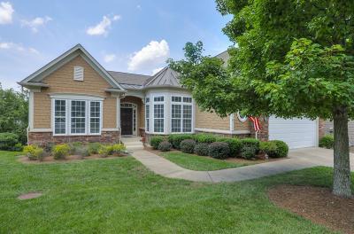 Single Family Home For Sale: 289 Antebellum Ln