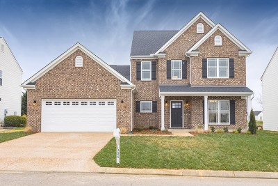 Spring Hill  Single Family Home For Sale: 1003 Vanguard Dr