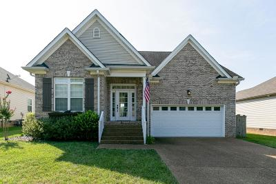 Spring Hill Single Family Home For Sale: 1093 Golf View Way